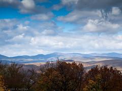 PA186213.jpg (Melian, Grey Wanderer) Tags: autumn nature hungary hills természet visegrád magyarország ősz 2013 dombság