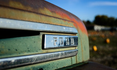 Fix Or Repair Daily (wickenden) Tags: blue ford pumpkins trucks torquoise