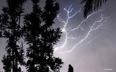 Cloud-to-cloud Lightning (Ian Bool) Tags: sky cloud storm nature rain weather landscape australia nsw newsouthwales thunderstorm lightning thunder raincloud millbank cloudtocloudlightning