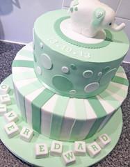 Baby Elephant Pastel Green Cake
