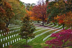 Final resting place (Ausamah) Tags: autumn trees red orange woman usa man sexy green art fall nature beautiful cemetery graveyard leaves yellow sex stone infantry arlington dead soldier photography death virginia photo dc washington bahrain amazing nice war branch colours peace force gulf place purple head military air rip headstone tomb tombstone navy arab fallen seals rest marines resting martyr airforce veteran officer    ausamah alabsi