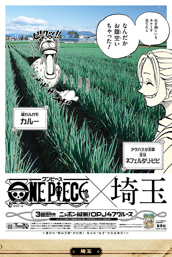 《海賊王》3億冊突破紀念 47都道府縣新聞廣告