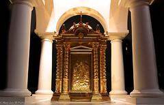 Tabernacle (marylea) Tags: worship catholic michigan annarbor holy sacred catholicchurch tabernacle stthomas romancatholic 2012 may10 stthomasaa talleresdeartegranda stthomastheapostlechurch stthomastheapostlecatholicchurch