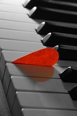Passion. (miniMe823) Tags: music love look truth play heart sister faith dream piano hobby frame passion change musik pure herz liebe spiel sehnsucht vernderung trume wahrheit klavier geborgenheit leidenschaft cahnge selbsterkennung