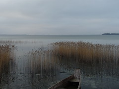 ,  (lyudru) Tags: travel winter sky lake reed water volyn ukaine