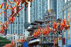 South Bridge Road (chooyutshing) Tags: singapore chinatown display lunarnewyear attractions chinesezodiac southbridgeroad yearofthehorse singaporeuniversityoftechnologyanddesignsutd chinesenewyearcelebrations2014 lanternhorsesculptures