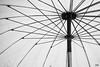 (WACHIWIT) Tags: white black art rain umbrella ร่ม wachiwit