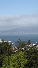 Otago Harbour (behinddreaming) Tags: view dunedin gigatowndunedin gigatowndun