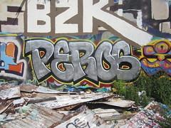 peros (wilderbeaster) Tags: street girls horses hot graffiti hawaii d ducks spray drugs chicks spraypaint honolulu gaffiti seahorses sluts horsing seahorsing