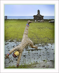 Taiwan scarecrow (1withone) Tags: ocean scarecrow figure hay ricefield farmanimals adyke