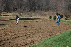 "Steve and Sam Sowing Their Oats <a style=""margin-left:10px; font-size:0.8em;"" href=""http://www.flickr.com/photos/91915217@N00/13943627224/"" target=""_blank"">@flickr</a>"