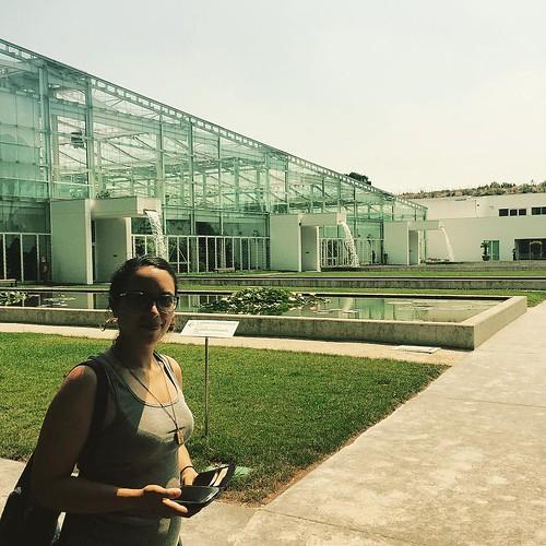 Bellezze architettoniche e bellezze e basta #ortobotanico #giardinodellabiodiversità #versolamontagna