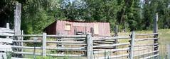 4th of July (Tracy Hunter) Tags: ranch picnic 4thofjuly monatana