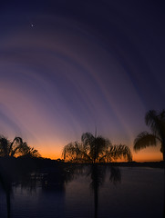 Catch a Falling Star . . . (C. P. Ewing) Tags: skyline sky night star water sunset sundown sun palm trees river gulf outdoor nature natural beautiful blue