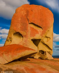 Remarkable rocks (Sougata2013) Tags: flinderchasenationalpark flinderchase nationalpark ki kangarooisland southaustralia australia remarkablerocks rockart rocks nature natural nikon nikond7200 sunset evening colours light