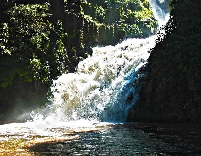 Madagascar2 - 096