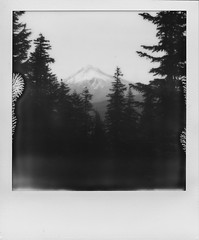 Mount Hood, Oregon (Christopher M Ebarb) Tags: impossible impossibleproject polaroid instant instantfilm landscape bw blackandwhite sx70 forest oregon pnw pacificnorthwest hood mountain mounthood