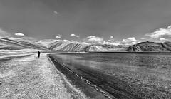 My favourite thing to do is to go where I've never been. / / /  #wanderlust #pangong #leh #lake #landscspe #landscapephotography #blackandwhite #blackandwhitephotography #bnw  #bnwsoul #creativeimagemagazine #eyeemphoto #viewbugfeature #travel #igtravel # (yogeshgupta4) Tags: travelphotography travel himalaya mountains water kashmir blackandwhitelandscape blackandwhitephotography blackandwhite human serenity landscape leh lake pangong instagramapp