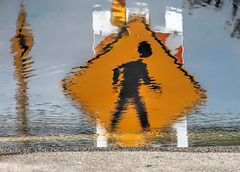 He walked on water (Susan Hall Frazier) Tags: street sign reflections puddle caution crosswalk walkonwater crosswalksign popartphotography