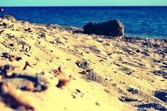 Sabbia biscionara