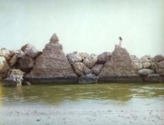 (ecotono) Tags: people woman film nature nude polaroid back being human crown expired graflex 125i ecotono
