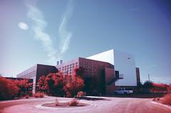 ISTB3 (Paul D Marquez) Tags: arizona phoenix architecture landscapes vines courtyard grapes infrared asu landscapearchitecture