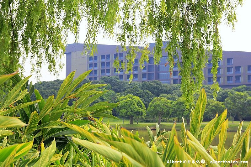 【高科技園區】廣東東莞.松山湖科技產業園區 (9)