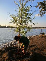 Plant a Wish: South Carolina