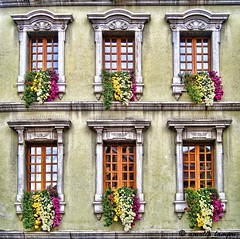Blooming windows (amalia lam (...Off.....)) Tags: windows shutters curtains annecy france europe houses homes residences walls decorativeobjects vases flowers reflections distortions windowpanes trees travels photos photography symmetry architecture canon