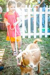 Grownups Birthday Petting Zoo (valkyrieh116) Tags: animals cuteness pettingzoo