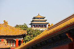 A view of a Pagoda of the Jingshan Park from the Forbidden City, Beijing, China (fabriziogiordano23) Tags: china park city trip travel panorama parco holiday pagoda asia view beijing forbidden journey vista forbiddencity jingshanpark 1001nights viaggi cina vacanza peking citt jingshan pechino proibita cittproibita 1001nightsmagiccity ringexcellence parcojingshan