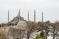 Istanbul (Edi Bhler) Tags: sky plant building tree ast pflanze himmel istanbul mosque structure architektur bluemosque bauwerk dach ferien baum gebude edi kuppel moschee minarett 28300mmf3556 nikond800 structuredetail blauemoscheeistambullm bauwerkdetail