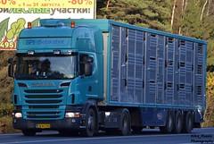 CW 94790_DK scania R500 blue + skotovoz spf-selskabet