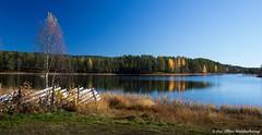 Autumn (Pewald) Tags: slicesoftime