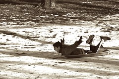Sledding~Flying (t.atkian) Tags: fun joy sledding sledriding youngmanhavingfun