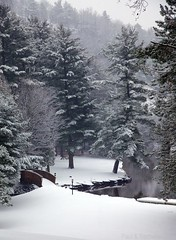 Snowy Bridge (rpgold) Tags: winter gold cottage muskoka lakeofbays canonef24105mmf4lis 2013 5dmarkii rachellepaul rpgold 5dmark2