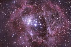 Rosette Nebula (adityaravi1210) Tags: Astrometrydotnet:status=solved Astrometrydotnet:id=nova172389