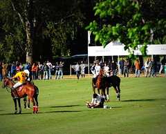 117th Hurlingham Club Open Championship, Argentina / 117 Abierto de Hurlingham YPF () Tags: vacation horse holiday latinamerica southamerica argentina argentine leather cheval nikon boots pony 70300mm polo rtw pferd vacanze tack hest roundtheworld paard sudamerica triplecrown  polopony amricadosul amricalatina globetrotter southernhemisphere zonasul amriquelatine polomatch  poloclub argentinien 16days  hurlingham equidae amricadelsur sdamerika hurlinghamclub leatherboots worldtraveler  ariannin  repblicaargentina littleeurope laaguada  americadelsud chukkas argentinerepublic  argentinidad pologame poloteam ladolfina   d700 nikond700 chukkers abiertodehurlingham  playerdown triplecorona 117thhurlinghamopen hurlinghamopen capitaloftango  chukers tradiciondelpoloargentino