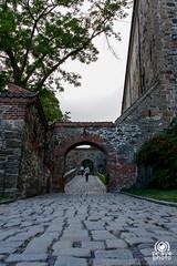 Fortezza di Akershus (andrea.prave) Tags: castle oslo norway norge fort akershus festning norvegia håkon fortezza slott pravettoni visitoslo andreapravettoni akersneset andreaprave