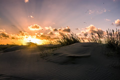 Scheveningen duinen sunset (Marco Bontenbal (Pixanpictures.com)) Tags: sunset beach strand nikon scheveningen sigma duinen d7100 mygearandme mygearandmepremium mygearandmebronze mygearandmesilver