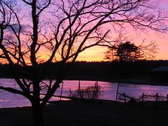 painted winter skies  Explored 01.20.14 (saudades1000) Tags: