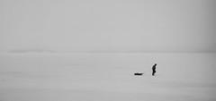 Fisherman (Antti Tassberg) Tags: windows winter blackandwhite bw mist snow ice monochrome fog zeiss espoo suomi finland nokia raw minimal smartphone scandinavia lumi wp talvi minimalistic jää carlzeiss sumu 1520 uusimaa dng lumia karhusaari mobilephotography pureview phablet lumia1520 puhletti