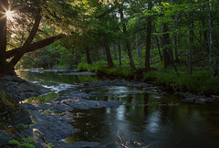 Slate River (Tamara Rivette Photography) Tags: nature water forest river landscape woods michigan slate upperpeninsula lanse slateriver puremichigan
