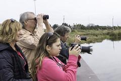 Bird Watching (RTC1) Tags: bird florida watching corridor pavilion sarasota fl celeryfields