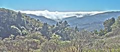 Mountain View - Muir Woods National Monument - Marin County - California - 23 February 2014 (goatlockerguns) Tags: california county trees usa mountains west nature clouds america forest flora natural marin unitedstatesofamerica scenic clear coastal muirwoods redwood hdr highdynamicrange nationalmonument