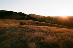 Almaden Sunrise (bior) Tags: film sunrise 50mm iso200 sanjose fujifilm elan almaden santaclaracounty newalmaden santaclaravalley countypark filmphotography filmslr canoneoselaniie elaniie almadenquicksilver 50l almadenquicksilvercountypark ef50mmf12lusm proplusii fujifilmproplusii