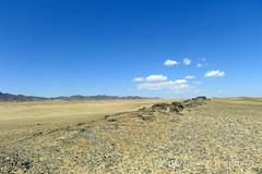 Somewhere in the Gobi... (10b travelling / Carsten ten Brink) Tags: asia goat mongolia camel nomad prehistoric petroglyph herd gobi rockart 2012 herdsmen pictograph mongolei rockengraving bichigtkhad carstentenbrink iptcbasic bituut bayangiinnuuru