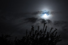 (balzs) Tags: light moon night darkness nightlight 1750 moonlight tamron longexpo eos60d