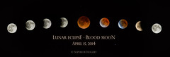 Lunar Composite (NightSkyMN) Tags: moon minnesota composite minneapolis lunareclipse bloodmoon