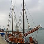 Rostock - Segelschiff »STAR OF HOPE« im Rostocker Stadthafen (3) thumbnail